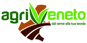 Agrivento logo