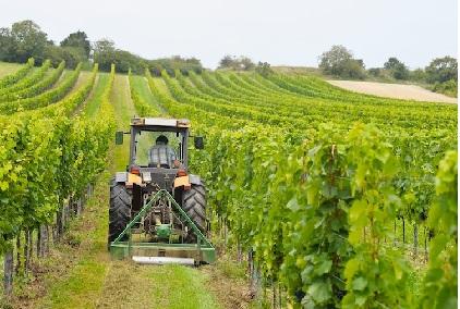 BANDO ISI - AGRICOLTURA 2016: stanziati 45 milioni di euro